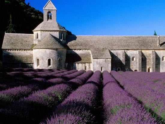 吕贝隆山区(Luberon)Sault修道院浪漫神秘的薰衣草花海