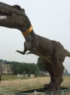 四川绵阳香草园遭遇恐龙突袭