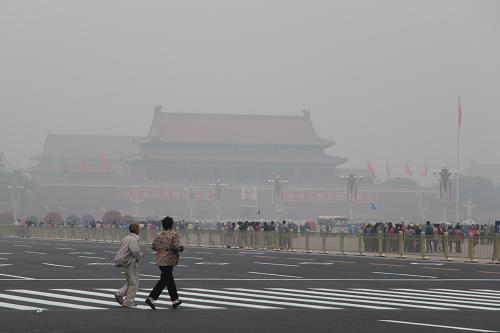 """中学生玩转""""植物大战雾霾"""" 香叶天竺葵能有效净化PM2.5"""